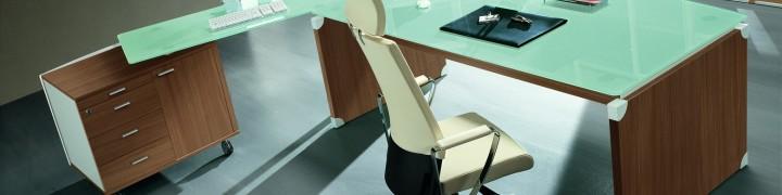 X66 Panel Executive Office Furniture